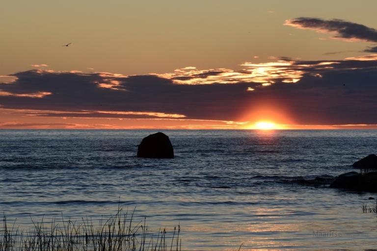 kesäkuu_auringonlasku_lokki_kivi