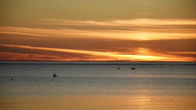 Kalajoen_hiekkasarkat