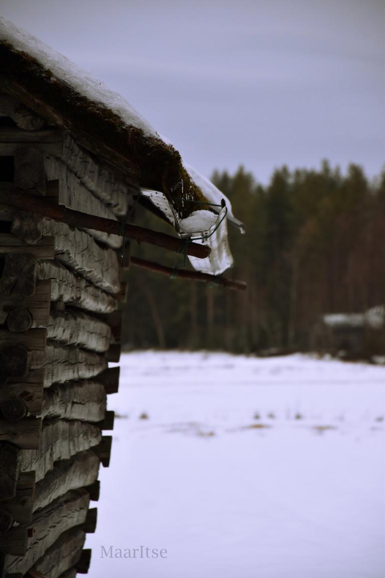 makrotex_talven_ihmemaa_maaritse_lato_lumisen_pellon_laidasssa
