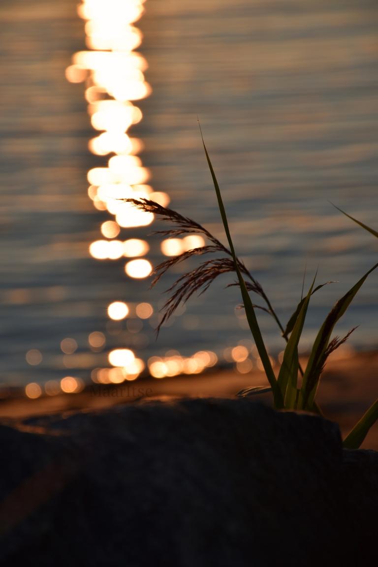 maaritse_auringonlasku_heijastuu_rantaan