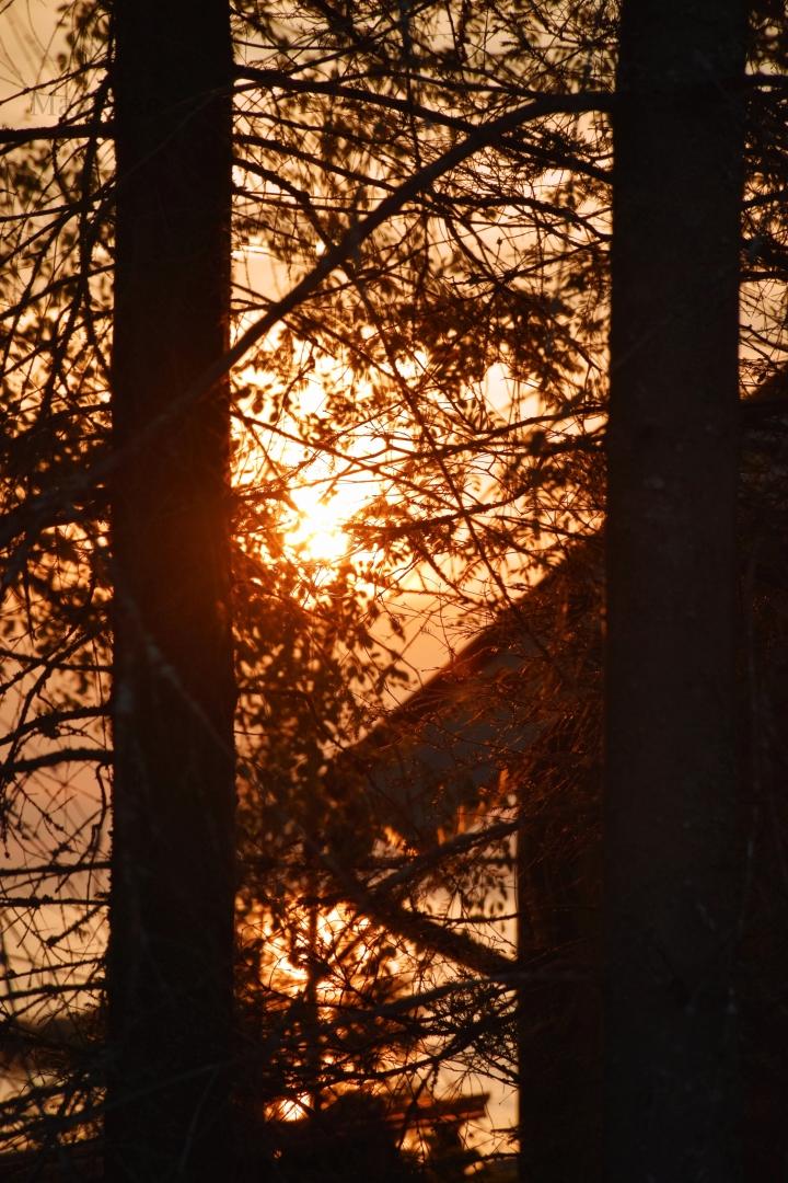 maaritse_auringonlasku_mokin_taakse